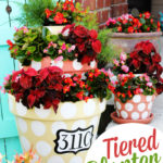 Polka-Dotted Tiered Planters