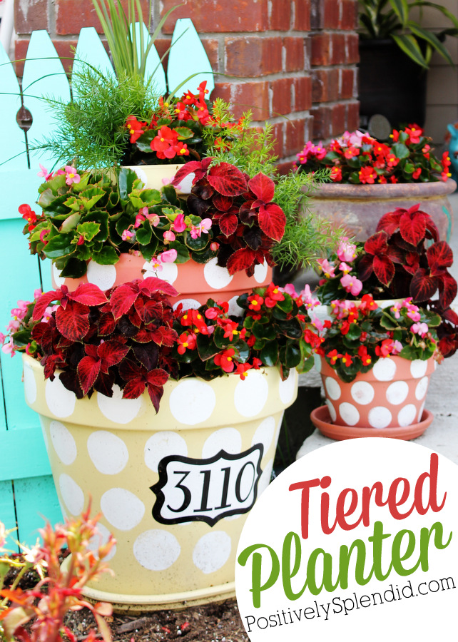 Polka-Dotted Tiered Planters - Positively Splendid {Crafts