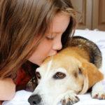 Our Bargain Beagle + Method Designed for Good Cutest Pet Contest