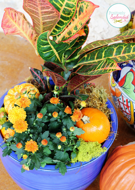 Stacked Pumpkin Planter at Positively Splendid - Such a unique idea for fall!