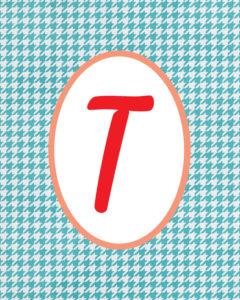 Blue Monogram T