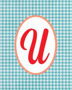 Blue Monogram U