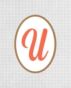 Grey Monogram U