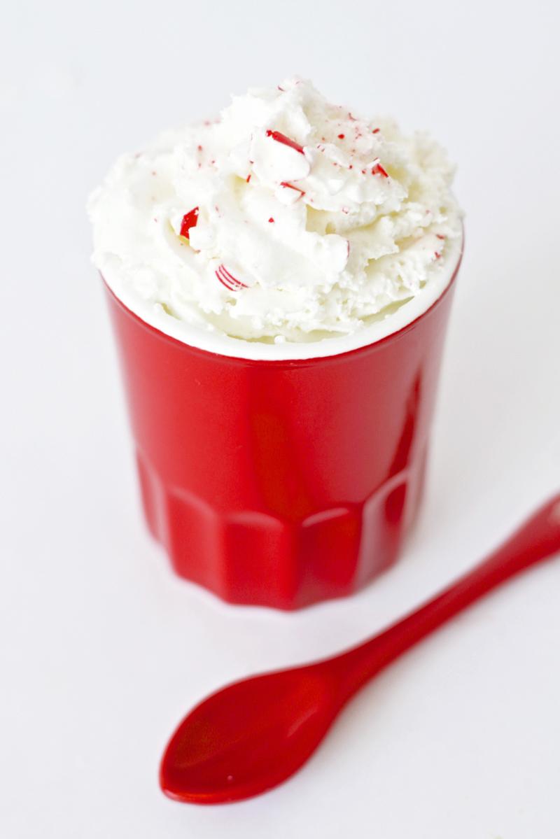 Peppermint Snowflake Gift Idea #SwellNoel