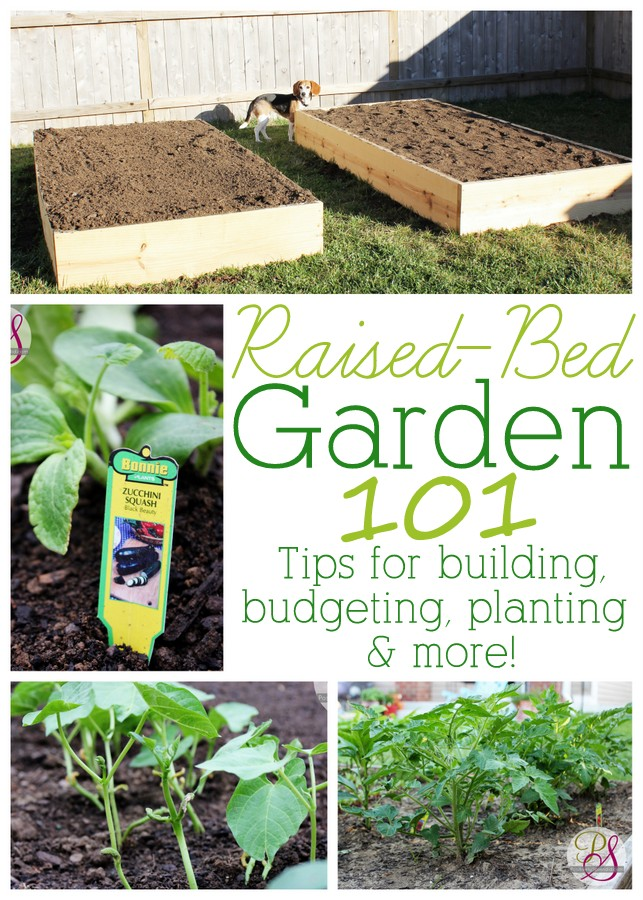 Great Information For Anyone Wanting To Try Out Raised Bed Gardening. Tips  For Building