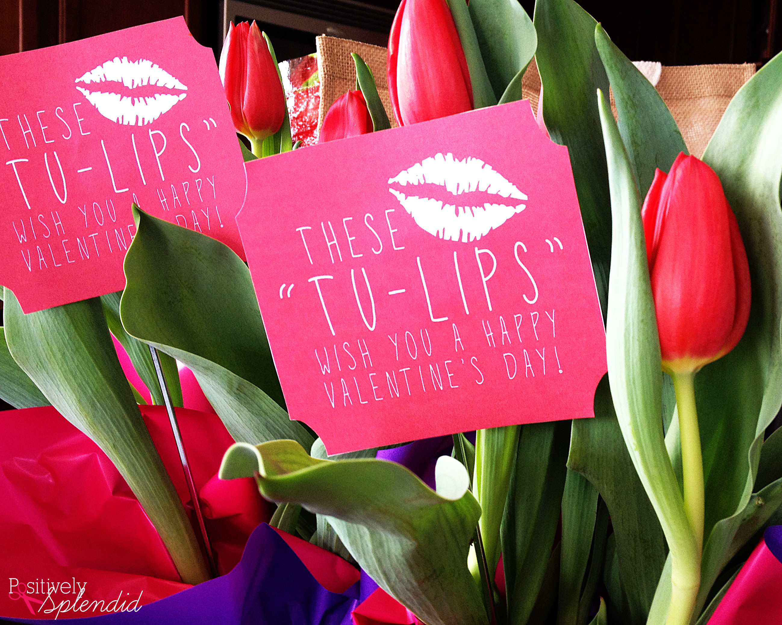 Tulip Easy Valentine Gift Idea With Free Printables At Positively Splendid